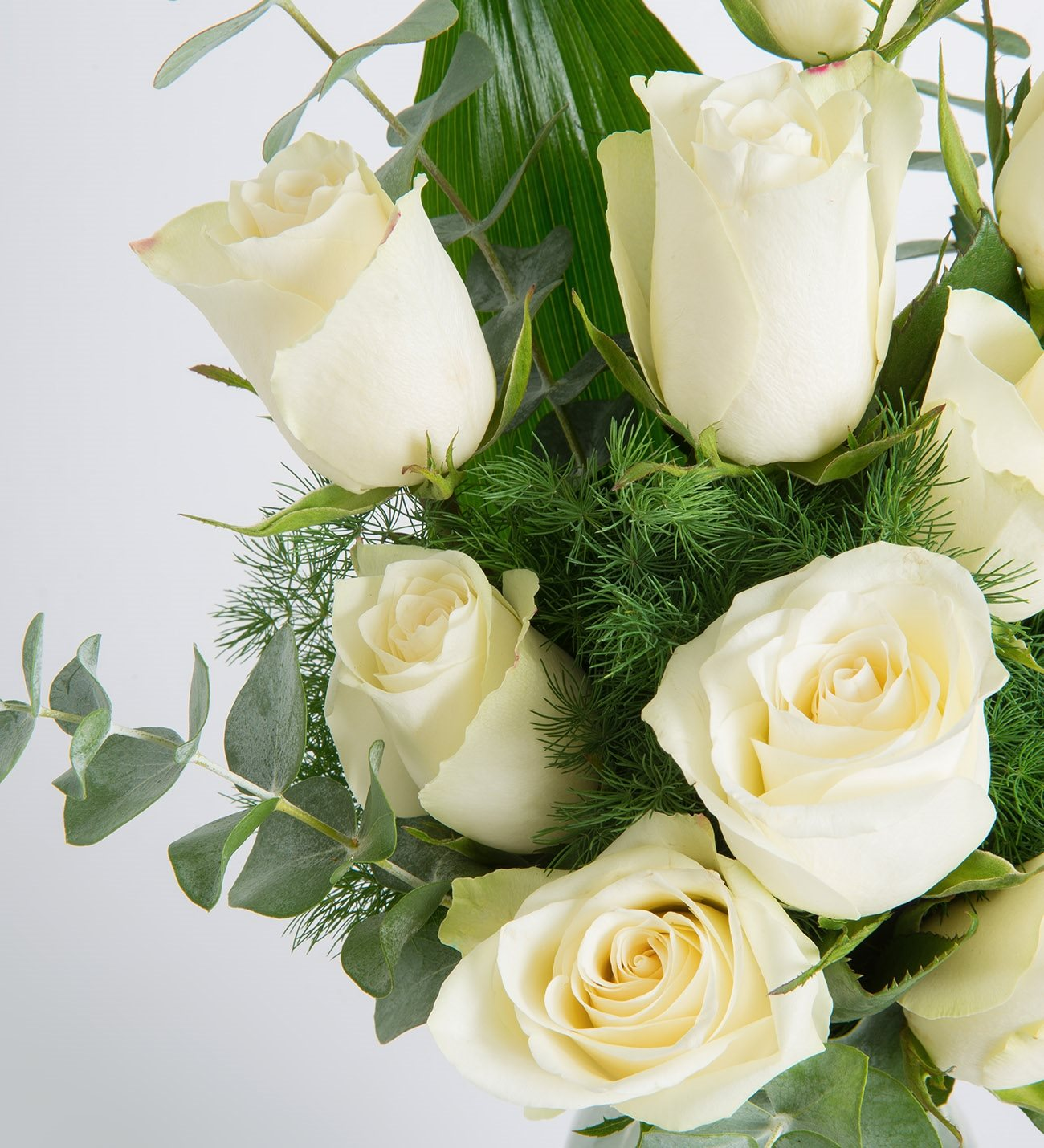 10 white roses purity of you izmirmasajfo