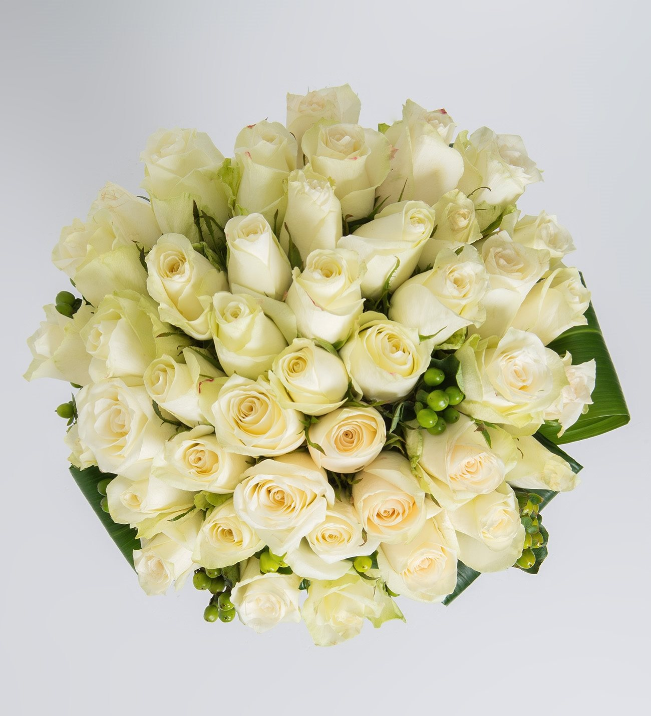 Get 50 white roses for same day delivery lolaflora 50 white roses mightylinksfo