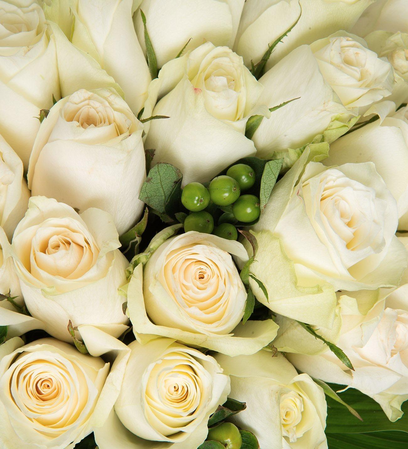 50 Rosas Blancas Amistad En Estado Puro Lolaflora