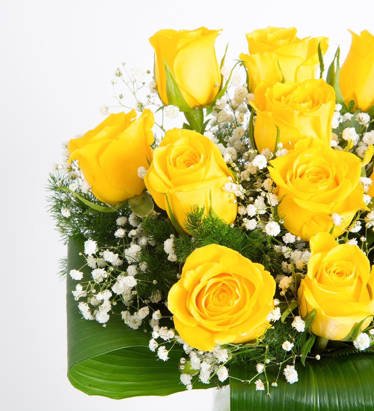 12 yellow roses good morning sunshine mightylinksfo