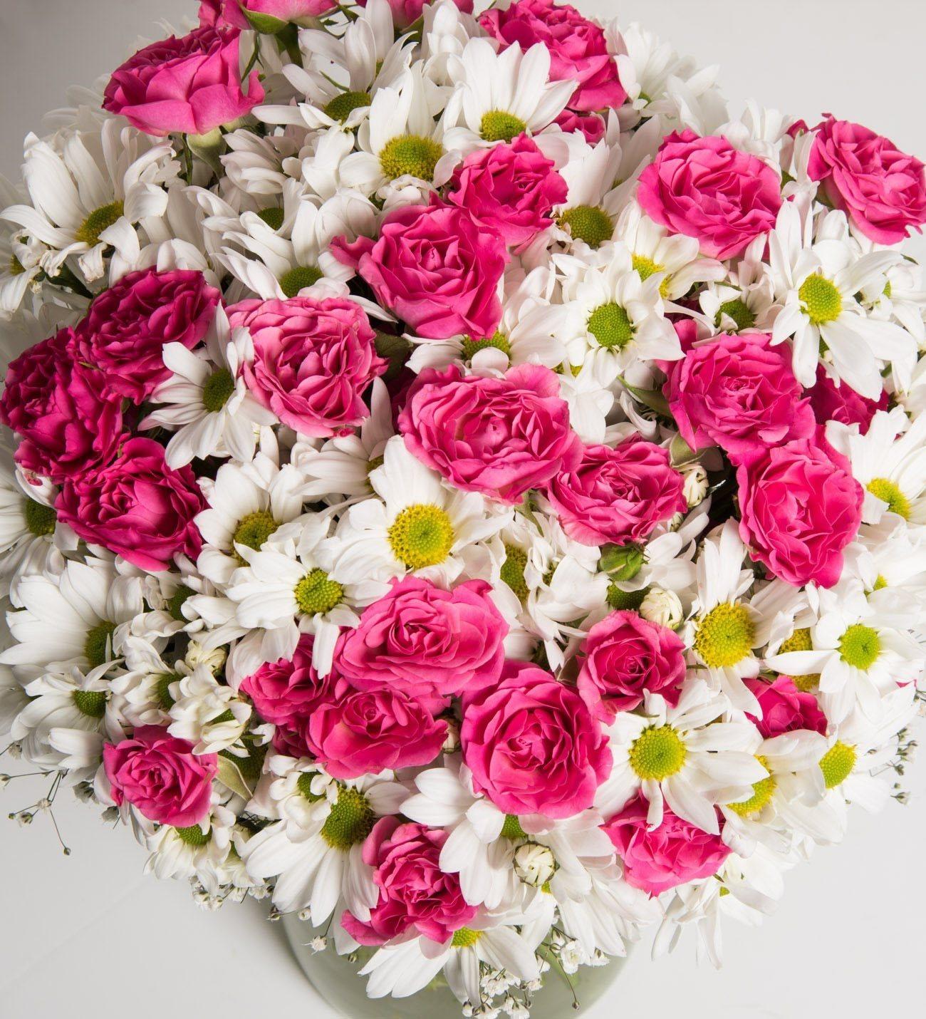 Pink rambler roses and daisies izmirmasajfo