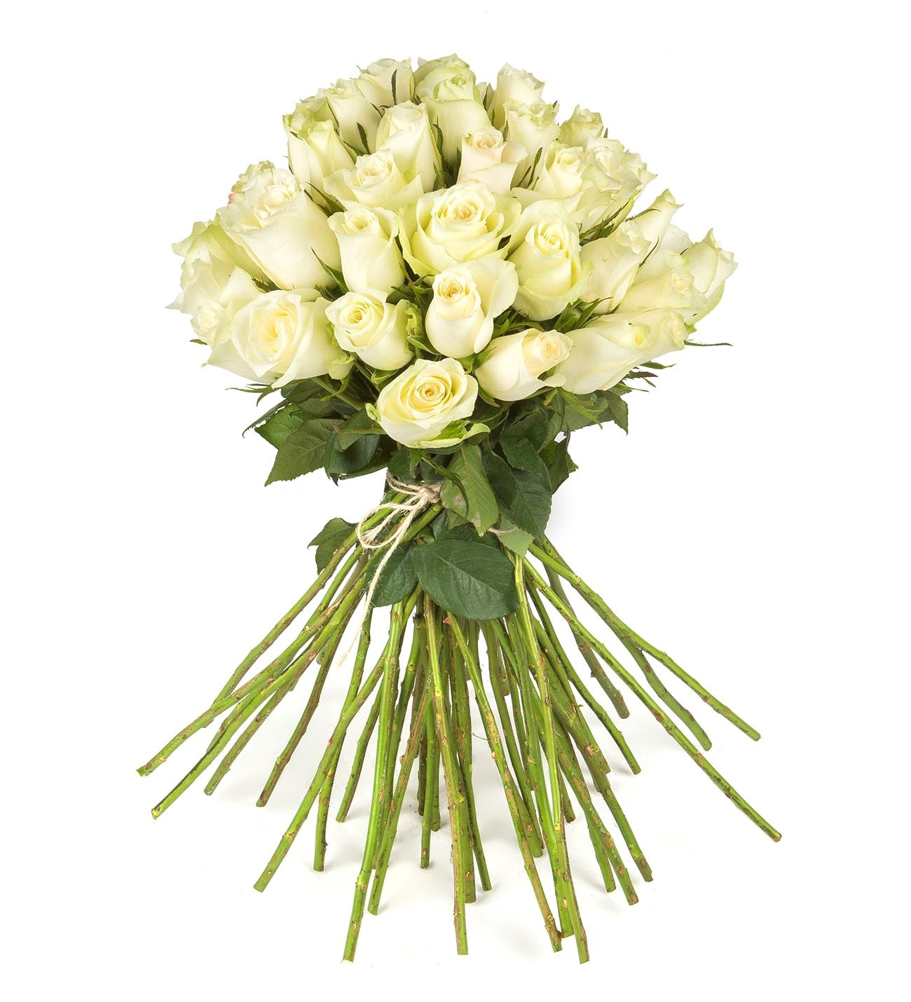 40 white roses dreamy white 40 white roses harmony of clouds izmirmasajfo