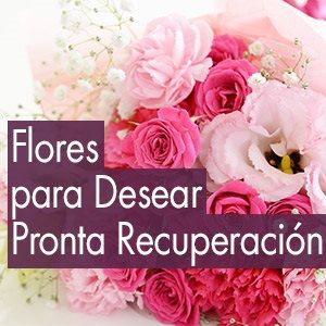 Mensajes De Recuperacion Envia Amor Y Energia Lolaflora